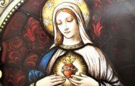 Suy niệm Lời Chúa Lễ Mẹ Vô Nhiễm: Này tôi là nữ tỳ Chúa