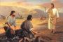 ĐTC Phanxicô: Các thánh trên trời luôn muốn giúp chúng ta nhận ơn Chúa