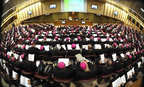 Tài liệu làm việc của Thượng Hội Đồng Giám mục Thế giới lần thứ XV