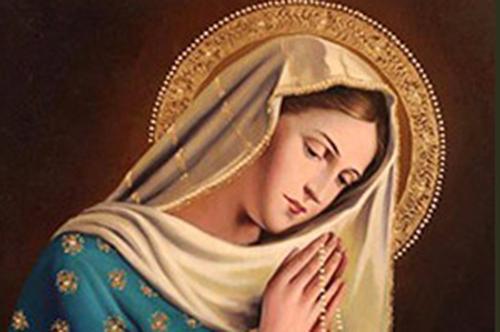 Được ủi an vì có Đức Mẹ
