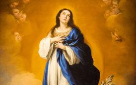 Suy niệm Lời Chúa - Lễ Mẹ lên trời.