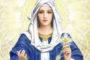 31 bài suy niệm hằng ngày trong tháng Truyền giáo: gặp gỡ Chúa Giêsu - Ngày 07/10