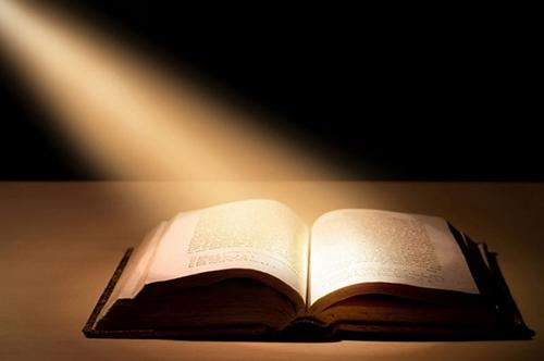 5 phút lời Chúa mỗi ngày -  Tuần 20 TN