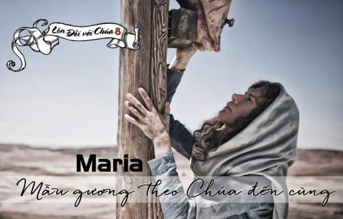 Suy niệm: lễ nhớ Đức Mẹ Sầu Bi