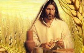 Lời Chúa Chủ nhật 20 thường niên -  Bánh Thánh Thể