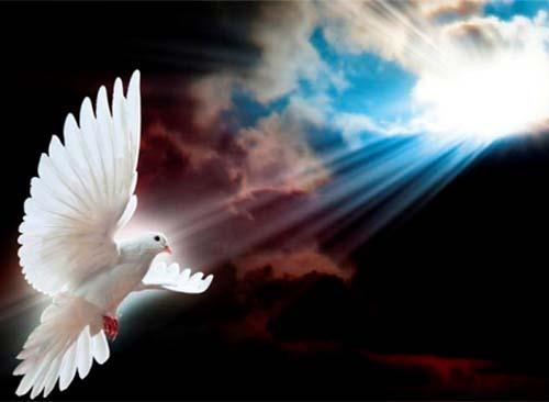 Sứ mạng chứng nhân - Lễ Hiện xuống