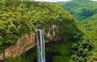 Tài liệu Làm việc của Thượng Hội Đồng Toàn Vùng Amazon: Phần 3, Chương 5-6 (9)