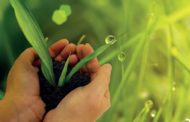 Ngày thế giới cầu nguyện cho sự chăm sóc của tạo vật