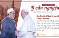Ý cầu nguyện tháng 11 của ĐTC Phanxicô