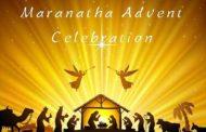 Hoa thiêng Mùa Vọng dành cho thiếu nhi - Tuần 4: Chúa đã gần đến