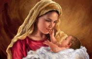 Lễ Mẹ Thiên Chúa - Như dạ lý mùa xuân