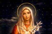 Đức Maria - sen giữa đời