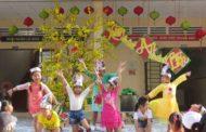 Cảm nghiệm về chuyến tông đồ mừng Xuân mới tại An Bình, Cần Thơ