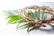 Cùng với Chúa Giêsu bước vào Tuần Thánh tại gia