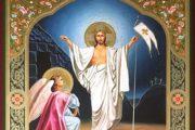 Chúa nhật Lễ Lá năm A: Hai Sắc Thái củaMầu NhiệmVượt Qua