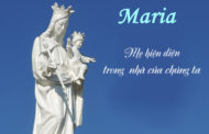 Tri ân Mẹ Phù Hộ, nguồn sống của đời con