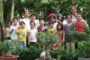 Truyền giáo tại Việt Nam hiện nay: ánh sáng và bóng tối