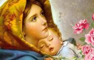 Năm đặc điểm của lòng sùng kính đích thực đối với Mẹ Maria