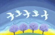 Sứ điệp ngày hòa bình thế giới lần thứ 54 (1-1-2021)