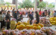 Chuyến tông đồ đến Giáo xứ Chày - Lưu xá sinh viên Cổ Nhuế