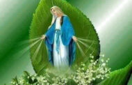 Sinh nhật Đức Maria - Ngày của niềm Hy vọng