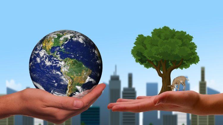 Sứ điệp chung của ĐTC và lãnh đạo Chính Thống giáo và Anh giáo mời gọi dấn thân vì thiên nhiên